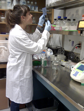 PhD student Sima Jonusaite working in a biology lab